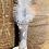 Thumbnail: Coussin plumé - gris à motifs