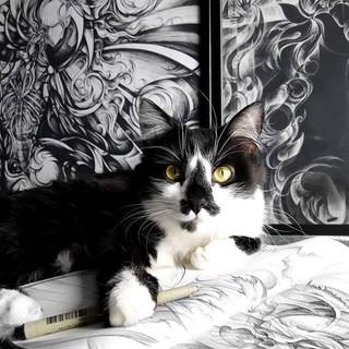 Dark Art - Dark Cat