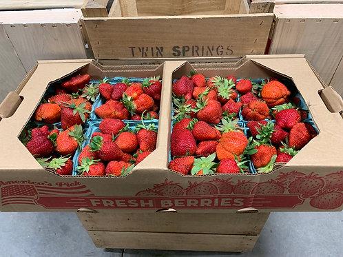 Strawberries: Flat of 8 quarts (returned from market)