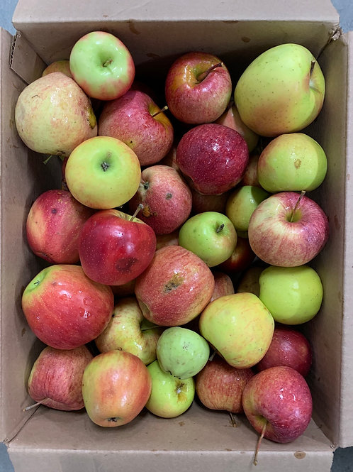 Apples: second quality mixed varieties(1/2 bushel)