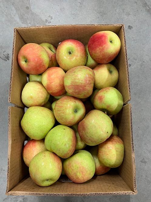 Apples: Honeycrisp (1/2 bushel )