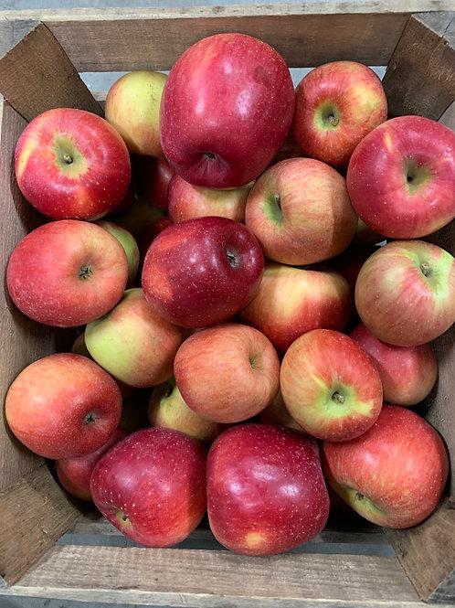 Apples: Nittany (1/2bu)