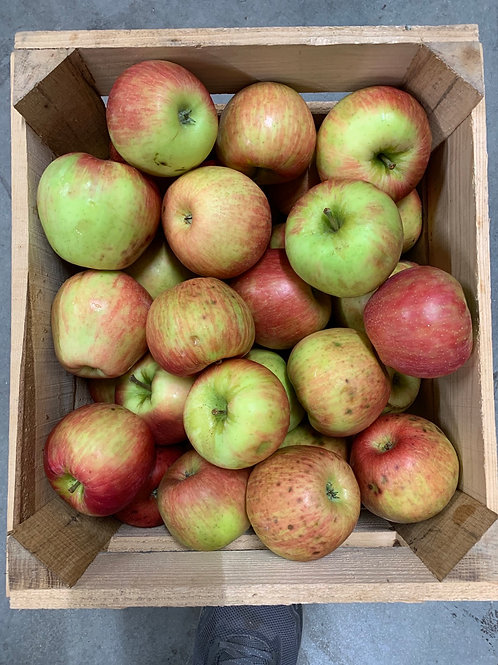Apples: second quality honeycrisp 1/2 bushel