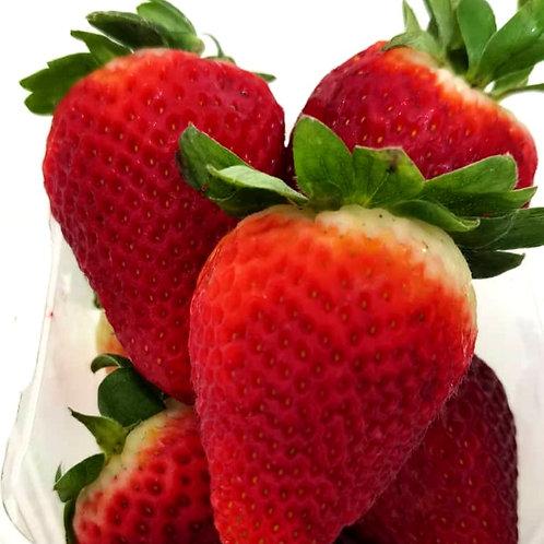 Australia Strawberry  ( 250g )