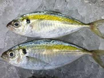 Fish Selar Kuning (1kg/pack)