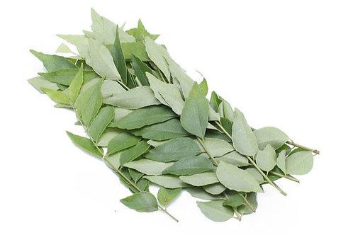 Curry Leaves 咖喱叶 ( 10g )