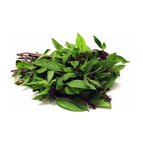 Thai Basil / Selasih Leaves 九层塔 ( 200g )