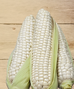 Corn Waxy ( 2 pcs )