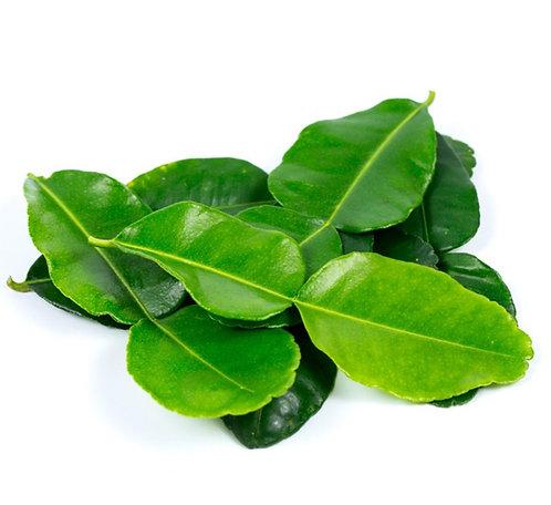 Lime Leaves 枫柑叶 ( 10g ± )
