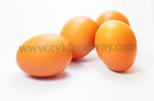 Egg Omega LTK 有机鸡蛋 ( 10 pcs )