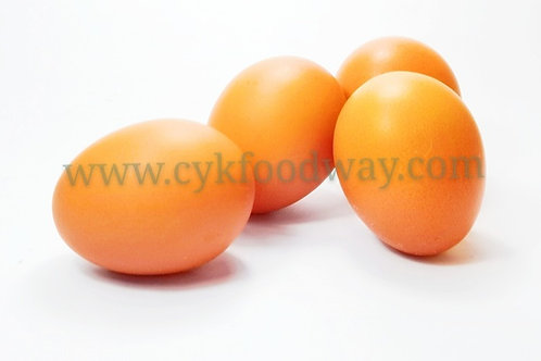 Egg Omega LTK ( 10 pcs )