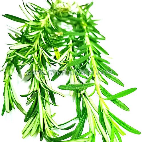 Fresh Herbs Rosemary 迷迭香 ( 10 g )