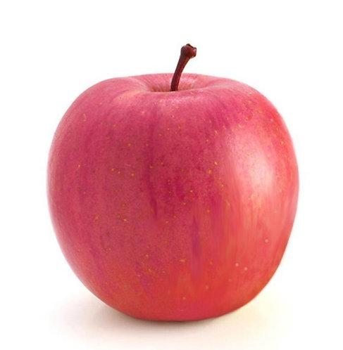 Apple RED ( 5 pcs )