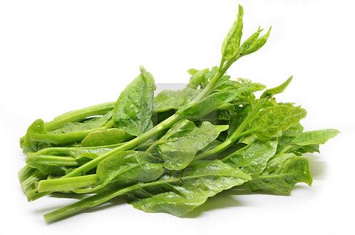 Ong Te Choy / Ceylon Spinach 帝王菜 ( 500g ± )