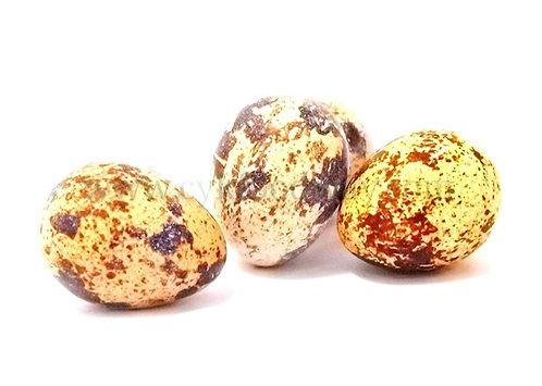 Egg Quail 鹌鹑蛋 ( 12 Pcs )