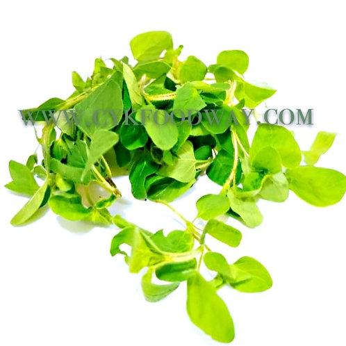 Herbs Fresh Oregano ( 80 g ± )