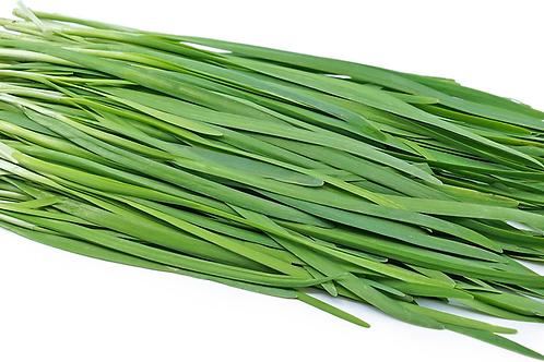 Chive Green / KuChai  韭菜 ( 100g ± )