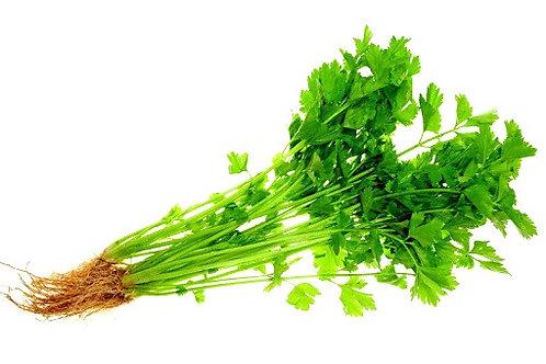Soup Leaves 芹菜 ( 200g )