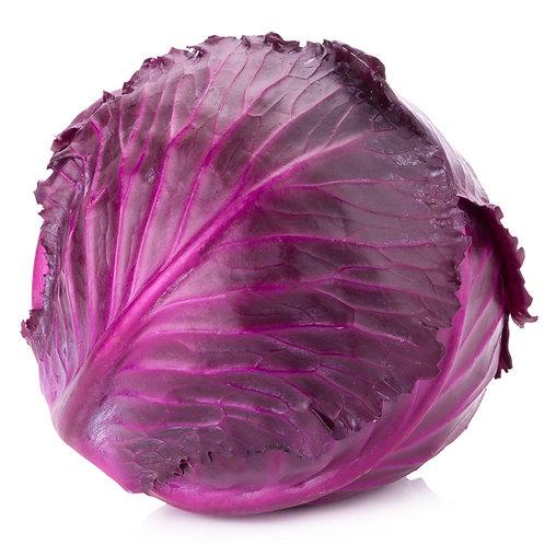 Red Cabbage / Purple 紫甘兰 ( Kg )