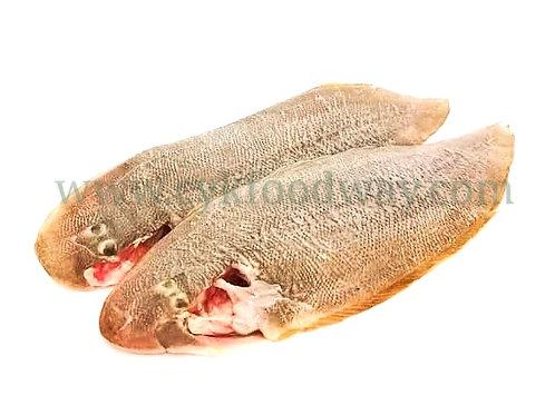 Tongue Fish 龙舌鱼 ( 500 g ± )
