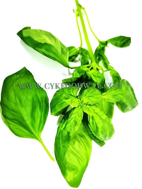 Fresh Herbs Basil Western 罗勒 ( 10 g )