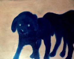 Dog study at night / Estudio de perr