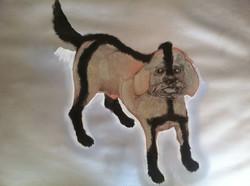 Perro rapado / Shaven Dog