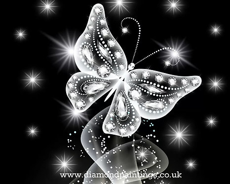 Diamond Butterfly 40*30