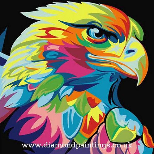 Colourful Eagle 15*15cm