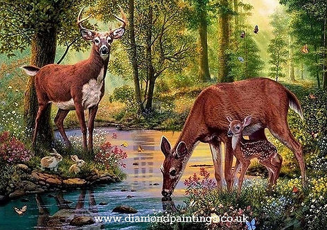 Deer by a Woodland Stream 30*40