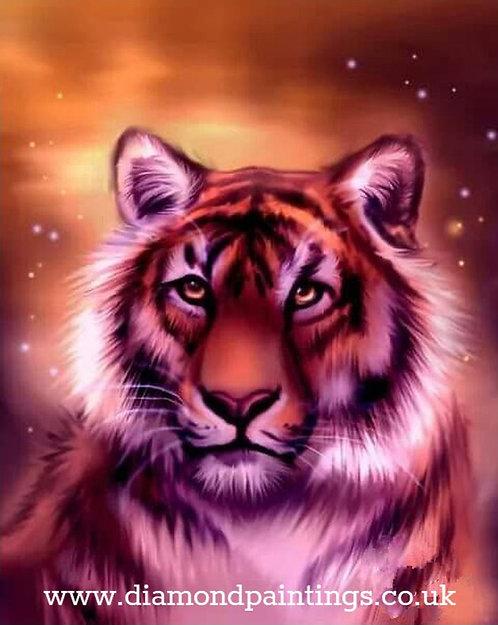 Tiger 30*40