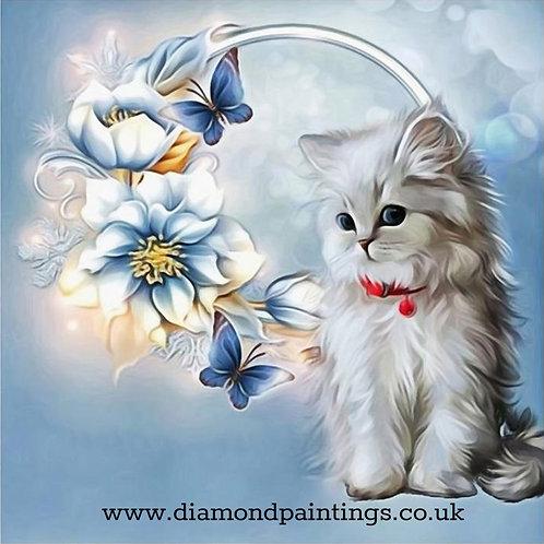 Grey Kitten, Blue Butterflies and Flowers  30*30