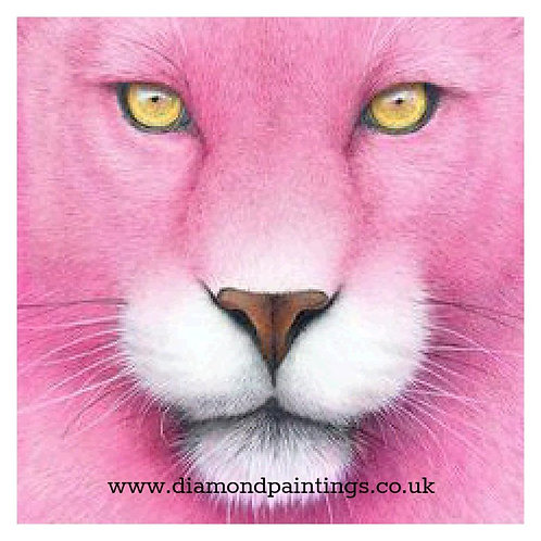 Pink Panther 20*20 cm
