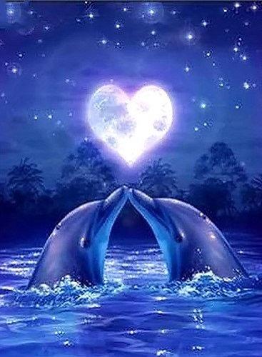 Dolphin Love 30x40cm