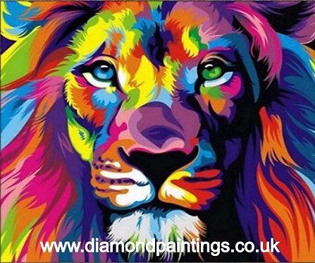 Colourful Lion 25 x 20