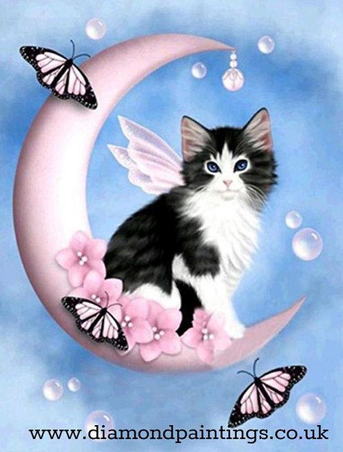 Fairy Cat on the Moon 30*40