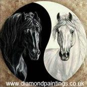 Yin & Yang Horses 30*30