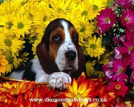 Bassett Hound in the Flowers 20x25 cm