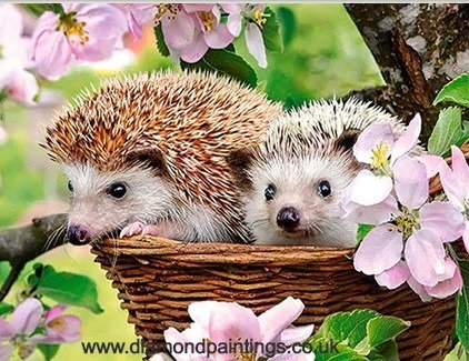 Hedgehogs in a Basket 40 x 30 cm