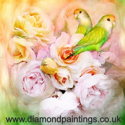 Budgies and Roses 30*30 Round