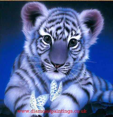 White Tiger Cub & Butterflys  20*20
