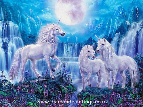 Unicorns in the Moonlight 30*40