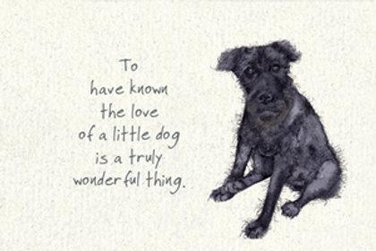 Little Dog Loss Sympathy Card