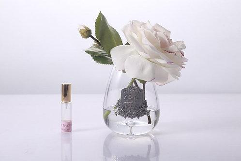 Cote Noire Tear Drop Rose 🌹 In Vase.