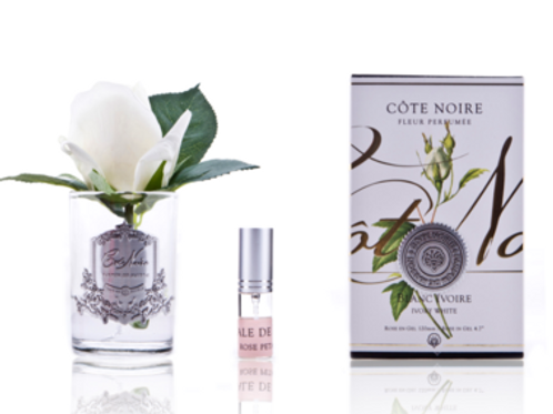 Cote Noire Rose Bud In Clear Vase