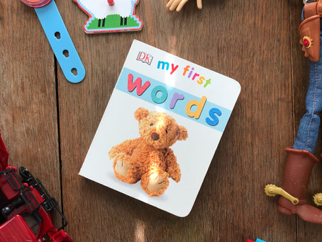 My First Words: Board Book