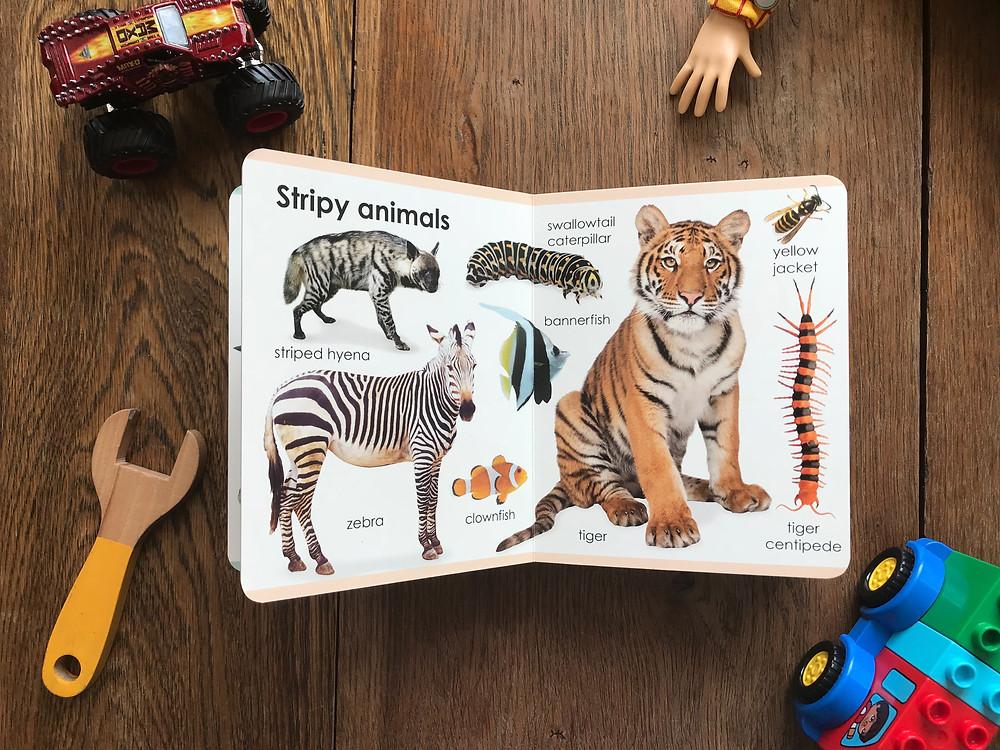 My First Animals, My First, Animals, Book, Children's Book, DK, Children