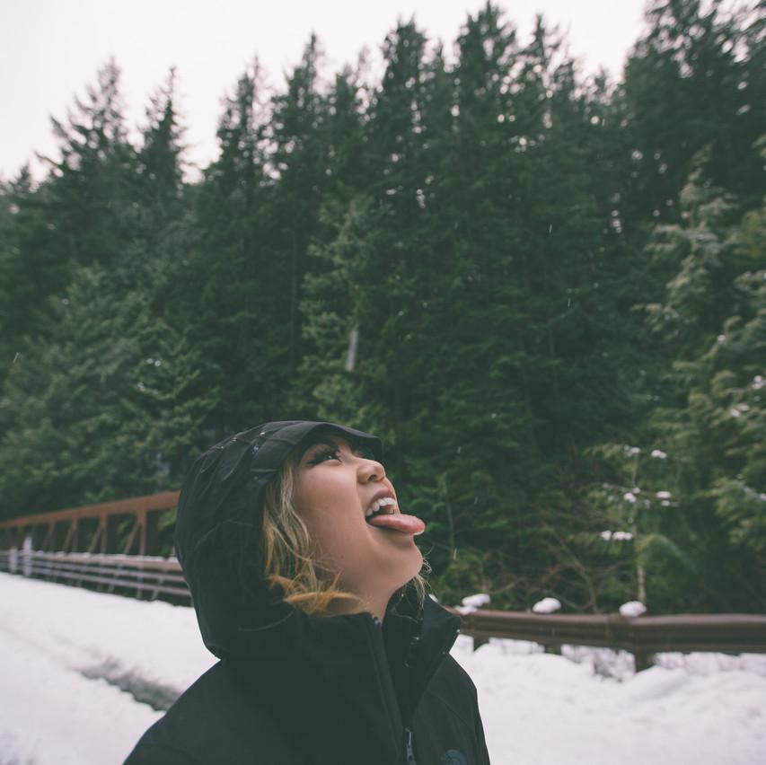 Taste the Snowflakes