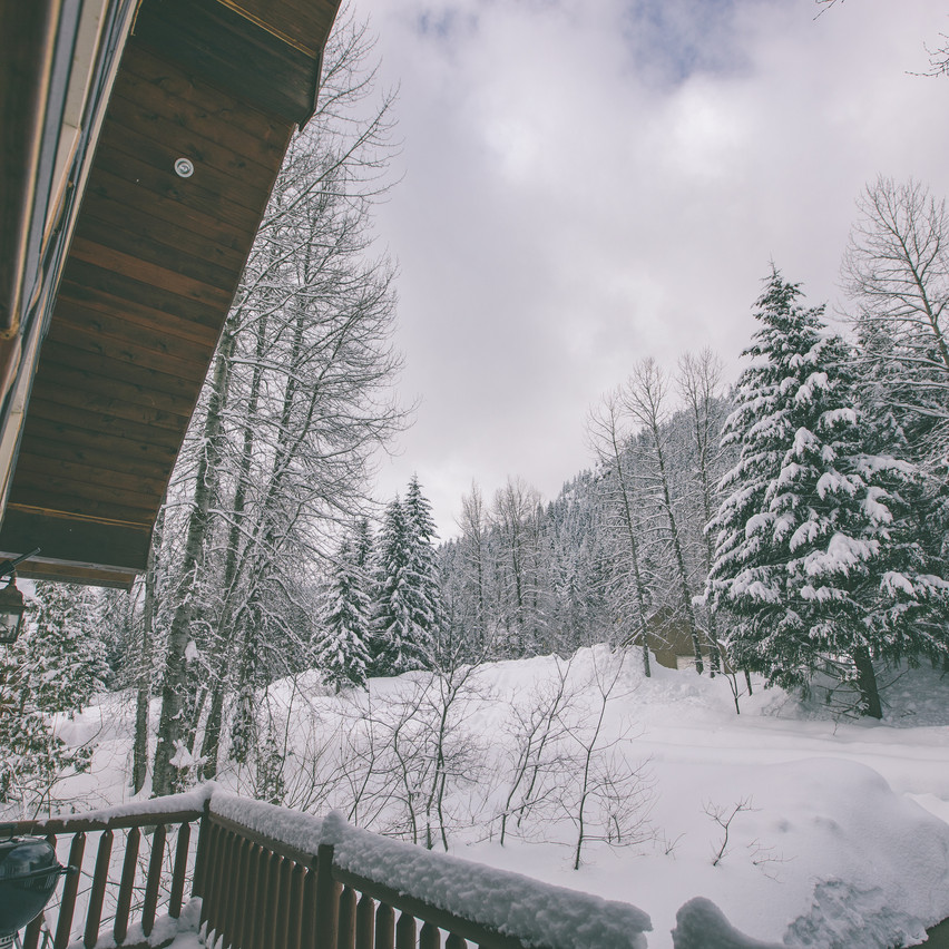 View from the Balcony of Cabin