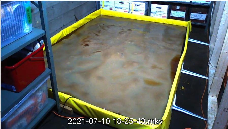 Screenshot 2021-09-14 at 13.21.38.png